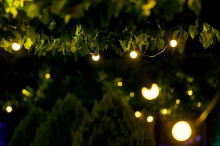 illumination backyard light garden with electric garland bulb of warm light bulbs, dark illuminate night scene of outdoor park nobody.