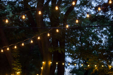 a garland of light bulbs glowing with warm light stretched on the branches of trees at the evening celebration of the holiday, close up details party decor, nobody.