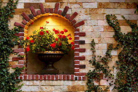 arch with a decorative opening for stone flowerpot with flower and illumination on the facade of building made of stone and winding ivy, a closeup of the architectural decor of an old European city.