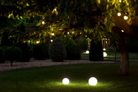 illumination backyard light garden with electric ground lantern with round diffuser lamp with garland of light bulbs on tree branch with leaves, dark landscaping with illuminate night scene, nobody.