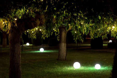 backyard garden with round balls of ground lanterns on mowed lawn and garlands on branches of deciduous trees on summer night, romantic backlit landscape, nobody.