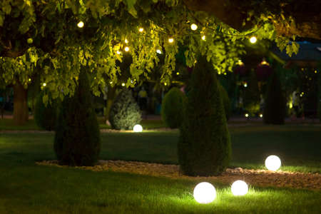 night backyard with mown lawn and trees festive decorated with garlands with light bulbs in the leaves of trees and ground ball lanterns on celebrate of party holiday park, nobody. Zdjęcie Seryjne