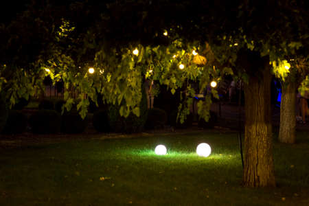 illumination backyard light garden with electric ground lantern with round diffuser lamp and garland of light bulbs on tree branches with leaves, landscaping with illuminate night scene, nobody.