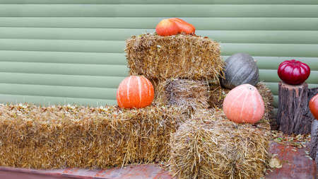 halloween decor near wooden store wall with haystack and pumpkins, poster with place for text on theme of celebration of holiday of autumn, copy space nobody.