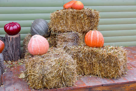pumpkins stand on sheaves of hay against the background of a wooden wall of boards, the decor of the photo zone on the theme of Halloween, nobody.