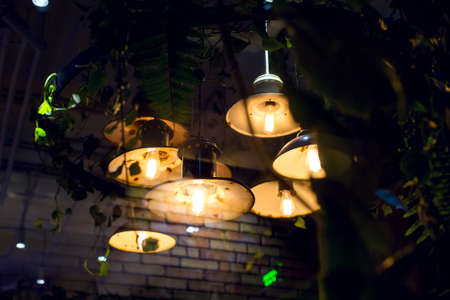 retro lanterns with round lights and an edison lamp with a warm glow suspended from the green leafed ceiling of an eco friendly cafe, through glass with a brick wall reflection, nobody. Фото со стока