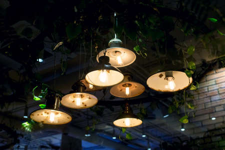 retro pendant lanterns with round rusty lights and edison lamp with warm glow hung on ceiling with green leaves eco friendly cafe plants, decorative lighting in interior of night restaurant, nobody.