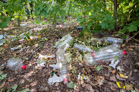 plastic dump in the forest among the trees, bottles and other inorganic garbage in nature close-up, nobody. Stock fotó