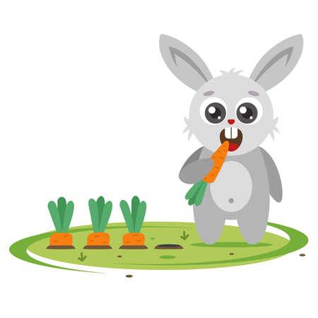 Grey Bunny versendet Karotten im Garten. landwirtschaftlicher Schädling. Flache Charaktervektorillustration.