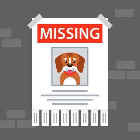 paper ad on the wall about the missing dog. flat vector illustration. Vettoriali