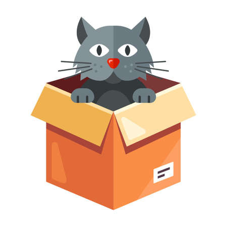 a stray cat lives in a cardboard box. flat character vector illustration isolated on white background.