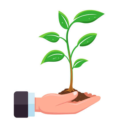 hand holds a sprout of a tree for planting in the ground. flat vector illustration.