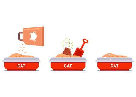 set cat litter box. cleaning of feces for a cat. pour the filler into the tray. flat vector illustration.