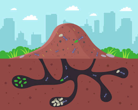 a large anthill with passages underground. flat vector illustration. 向量圖像