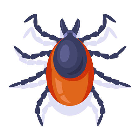 forest encephalitis tick on a white background. insect dangerous to humans. flat vector illustration.