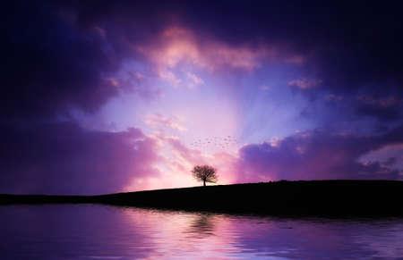 Sunset magentas Foto de archivo
