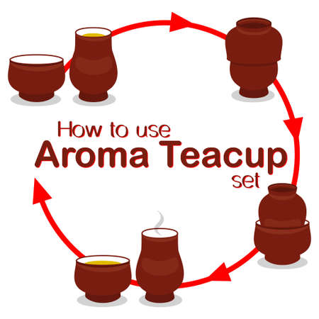How to use chinese aroma tea cup pair set instruction manual poster.