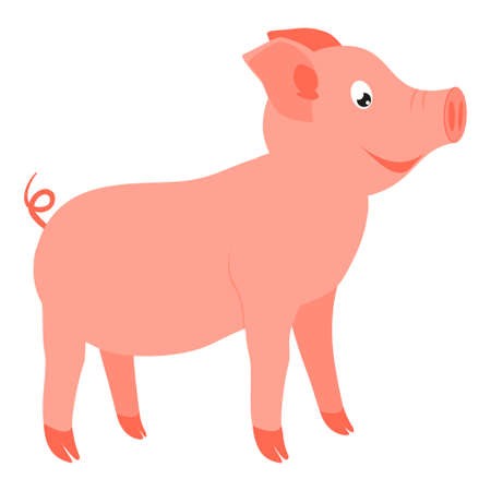 Colorful cartoon happy standing pig side view. 2019 year chinese symbol. Farm animal vector illustration for icon, sticker sign, patch, certificate badge, gift card, stamp, label, poster, web banner Ilustração
