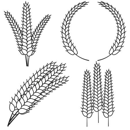 Line art black and white ripe wheat ear set. Elements for ad design. Harvest themed vector illustration for icon, sticker, label, badge, emblem, certificate or ad banner decoration