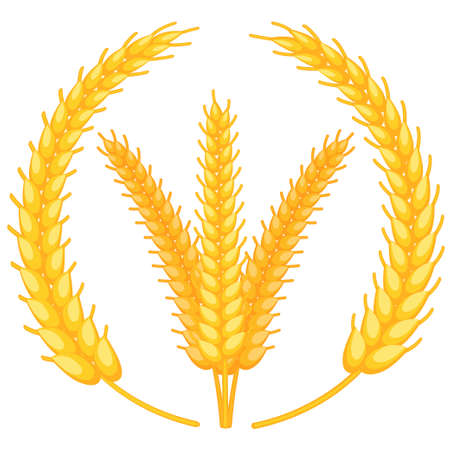 Colorful cartoon ripe wheat ear wreath. Background with copyspace for advertisement leaflet. Harvest themed vector illustration for icon, label, emblem, certificate or ad banner decoration