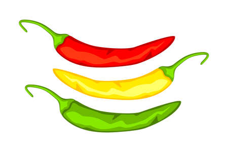 Colorful cartoon hot chilli pepper. Spicy food seasoning. Mexico theme vector illustration for icon, stamp, label, badge, certificate, leaflet, brochure or banner decoration