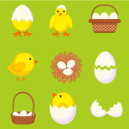 Colorful cartoon chicken eggs set. New chicks, cracked eggs and nest. Farm bird vector illustration for icon, stamp, label, certificate, brochure, gift card, poster, coupon, banner decoration