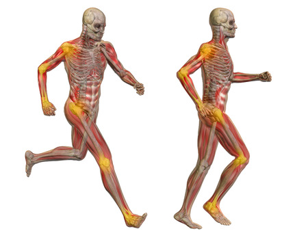 Conceptual 3D human man anatomy joint pain body isolated Banco de Imagens