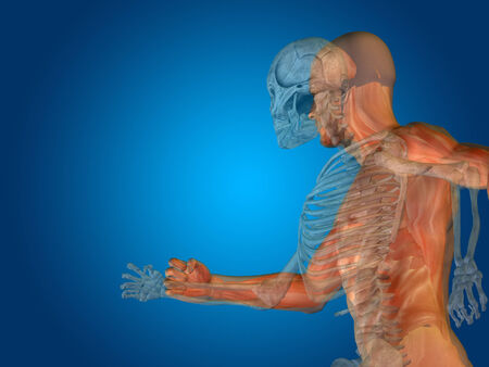 Conceptual Anatomy human body on blue background photo