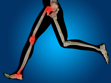 knee cap: Conceptual human body anatomy articular pain on blue background