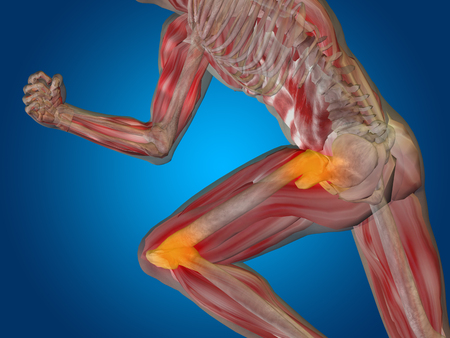 osteoporosis: Conceptual human body anatomy articular pain on blue background