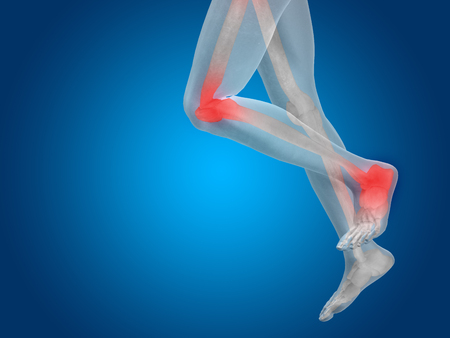 shin bone: Conceptual human body anatomy articular pain on blue background