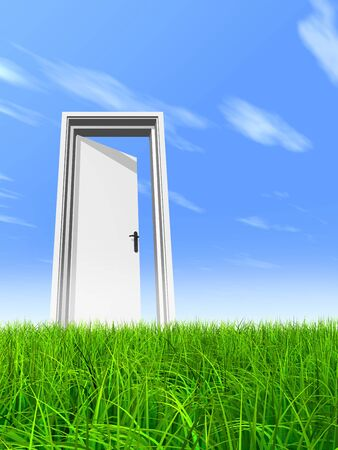 White door in green grass with sky background photo