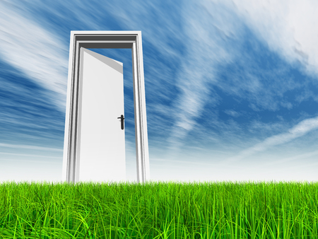 puerta abierta: Puerta blanca en la hierba verde con el cielo de fondo