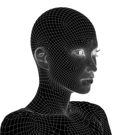 cabeza femenina: High resolution concept or conceptual 3D wireframe human female head isolated Foto de archivo