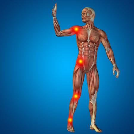 anatomía: Conceptual cuerpo dolor en las articulaciones hombre anatomía humana en 3D sobre fondo azul