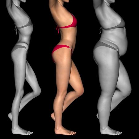 mujeres gordas: Mujer conceptual 3D o niña como grasa, sobrepeso vs ajuste, anoréxica bajo peso flaca sana