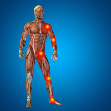 human bones: Conceptual cuerpo dolor en las articulaciones hombre anatomía humana en 3D sobre fondo azul