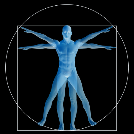 blue circle: Vitruvian human or man as a concept or conceptual 3d proportion anatomy body isolated on background