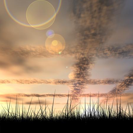 libertad: Hierba abstracto negro sobre fondo cielo del atardecer