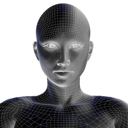 cyber woman: Concept or conceptual 3D wireframe young human female or woman face or head isolated on background Stock Photo