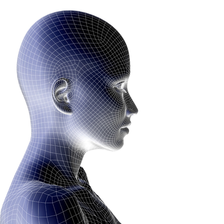 Concept or conceptual 3D wireframe young human female or woman face or head isolated on background 免版税图像