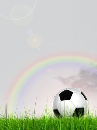 Conceptual 3D soccer ball in fresh green summer or spring field grass with a rainbow sky background
