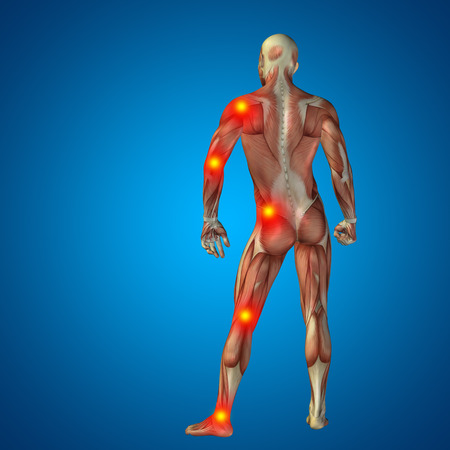 bone anatomy: Conceptual 3D human man anatomy joint pain body on blue background Stock Photo