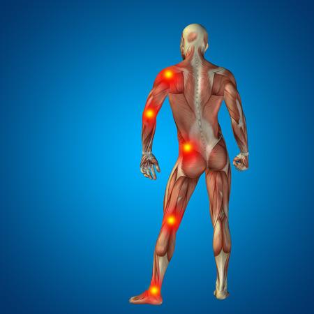 anatomia: Conceptual cuerpo dolor en las articulaciones hombre anatom�a humana en 3D sobre fondo azul