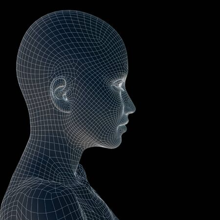 Concept or conceptual 3D wireframe young human female or woman face or head isolated on background Banco de Imagens