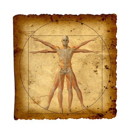 man in field: Concept or conceptual vitruvian human body drawing on old paper background