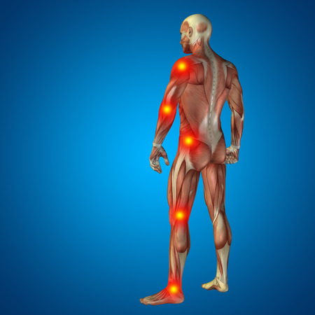 man in pain: Conceptual 3D human man anatomy joint pain body on blue background Stock Photo
