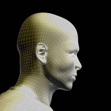 artificial model: Concept or conceptual 3D wireframe young human male or man face or head isolated on background