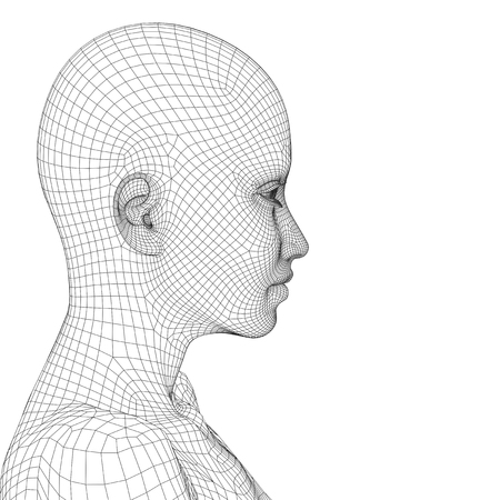Concept or conceptual 3D wireframe young human female or woman face or head isolated on background Stock Photo