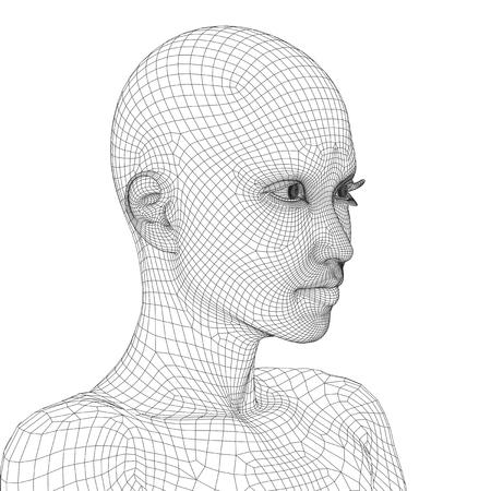 cabeza femenina: Concepto o wireframe 3D conceptual joven hembra humana o mujer cara o la cabeza aislada en el fondo
